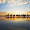 7 bãi biển đẹp nhất Australia