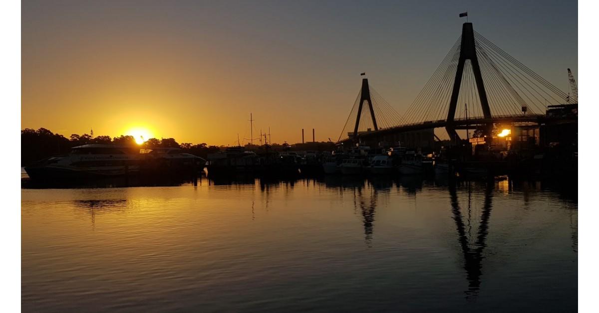 Thiên đường hải sản - chợ cá bên vịnh Blackwattle